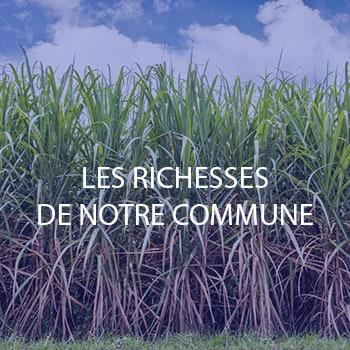Découvrez les richesses de Sainte-Marie - Ville de Sainte-Marie (97438) - www.ville-saintemarie.re