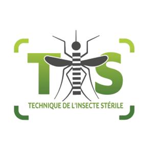Lâchers des moustiques mâles stériles à Duparc : Kosa ou en pens' ?