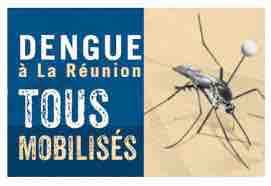 Dengue à La Réunion L'épidémie diminue mais reste intense