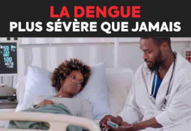 Epidémie de dengue à La Réunion