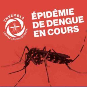 Epidémie de dengue à La Réunion : la circulation du virus baisse.